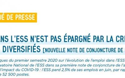 Le projet d'avis d'ESS France sur le pacte de croissance de l'ESS